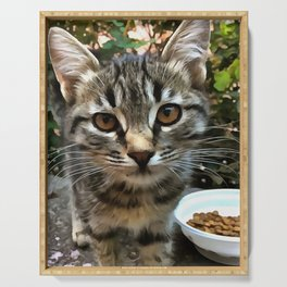 Tabby Cat Kitten Making Eye Contact Serving Tray