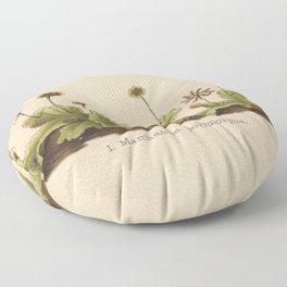 Antique Moss Lithograph Floor Pillow