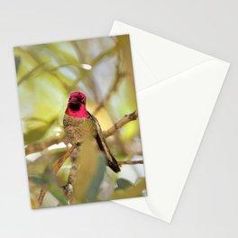 Hummingbird Beauty Stationery Cards