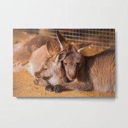 Cuddling Kangaroos  (digital painting) Metal Print