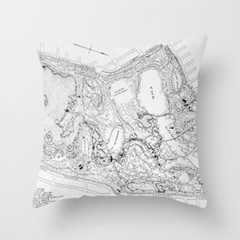 Vintage Map of Prospect Park (1901) Throw Pillow