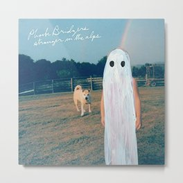 Phoebe Bridgers Album  Metal Print