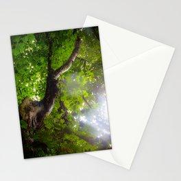 Deer Tree Stationery Cards