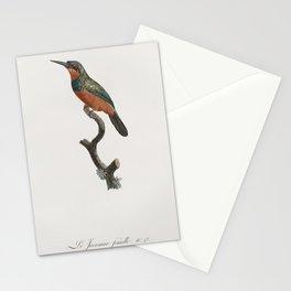 Green-tailed Jacamarfemale from Histoire Naturelle des Oiseaux de Paradis et Des Rolliers (1806) by Stationery Cards