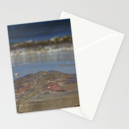 Huge Jellyfish on the beach, Bowditch Point Park Stationery Cards