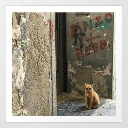 Gatto in Napoli Art Print