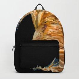 Siamese fighting fish on black background, Yellow Half moon betta fish Backpack