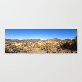Desert Horizon Canvas Print