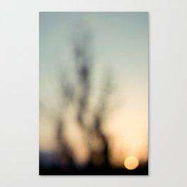 Sheer & Clear Canvas Print
