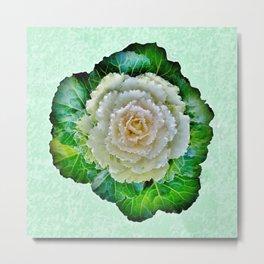 Beige Cabbage from the Garden Metal Print