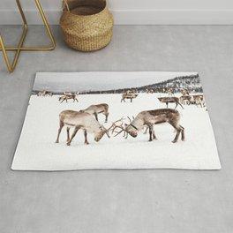 Playing Reindeers In Snow In Tromsø   North Of Norway Photo   Travel Photography Art Print Rug