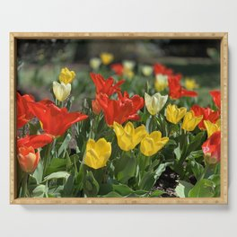 Lewes Tulips Festival Serving Tray