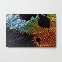 Vibrant Iridescence of The Madagascan Sunset Moth Metal Print