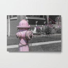 Pink Fire Hydrant with Flowers Behind Sidewalk Residential Fireplug Metal Print