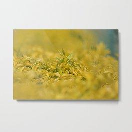Yellow, Yellow, Super Fellow Metal Print