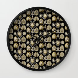 Ernst Haeckel Echinidea Sea Urchin Wall Clock