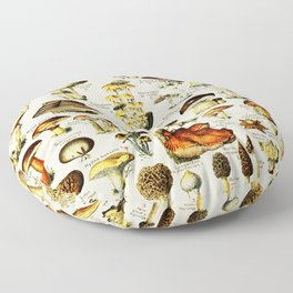 French Vintage Cream Mushrooms Chart Adolphe Millot Champignons Larousse Pour Tous Poster Floor Pillow