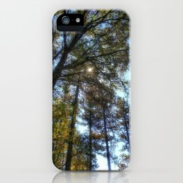 Vibrant National Forest iPhone Case