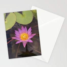 Water Lily - Nymphaea sp. Stationery Cards