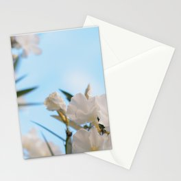 Vintage & Shabby Chic Floral White Oleander Flowers  Pattern Stationery Cards