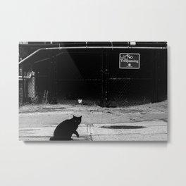 Cat Shadow Metal Print