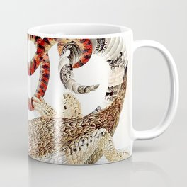 Spectacled Caiman and a False Coral Snake by Maria Sibylla Merian c.1705-10 // Wild Animals Decor Coffee Mug