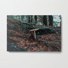 Mushroom in the forest Metal Print