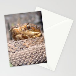 Watercolor Snake, Water Moccasin 10, Merchants Millpond, North Carolina, Coiled Warmth Stationery Cards