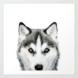 Siberian Husky dog with two eye color Dog illustration original painting print Kunstdrucke