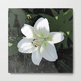 Amazing garden flowers 23 Metal Print