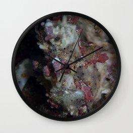 Warty frogfish Wall Clock