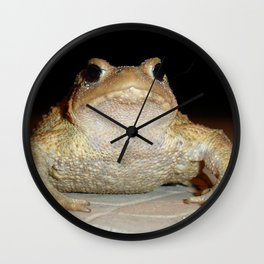 Common European Toad Wall Clock