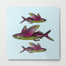Flying Fish | Vintage Flying Fish | Metal Print