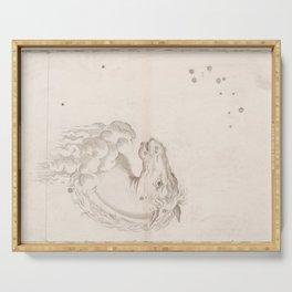 Johann Bayer - Uranometria / Measuring the Heavens (1661) - 18 Equuleus Serving Tray