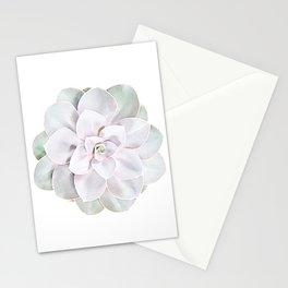 Echeveria perle von nürnberg Stationery Cards