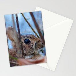 Hiding Rabbit2 Stationery Cards