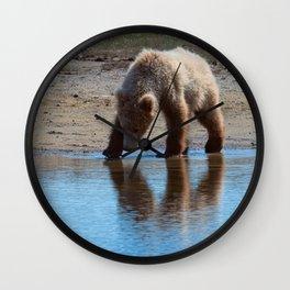 Grizzly Cub Drinking from Stream  Alaska Katmai National Park #Socety6 Wall Clock