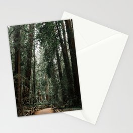Path in Muir Woods Stationery Cards