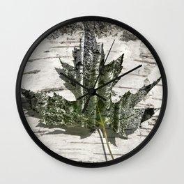 Silver maple -  Érable argenté - Acer saccharinum Wall Clock