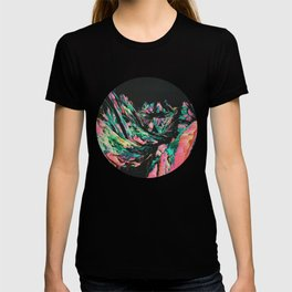 BEYOMD T-shirt
