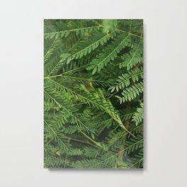 Textures nature Metal Print