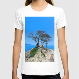 At the Brick of Loneliness T-shirt