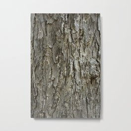 Tree Bark Texture Metal Print