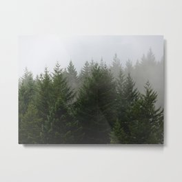 Foggy Trees Pacific Northwest Metal Print