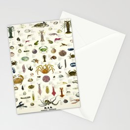 Wanderlust edible molluscs and crustaceans Stationery Cards