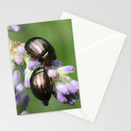 Two Colorful Rosemary Beetles Macro Stationery Cards