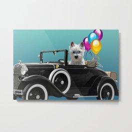 Foxterrier in old cabriolet car with balloons Metal Print