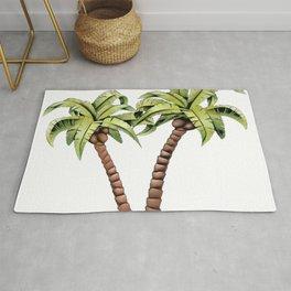Coconut palm family genus Cocos botanically drupe nut Rug