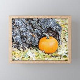 Little Pumpkin 4 Framed Mini Art Print