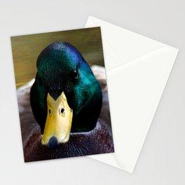 Duck Headshot Stationery Cards